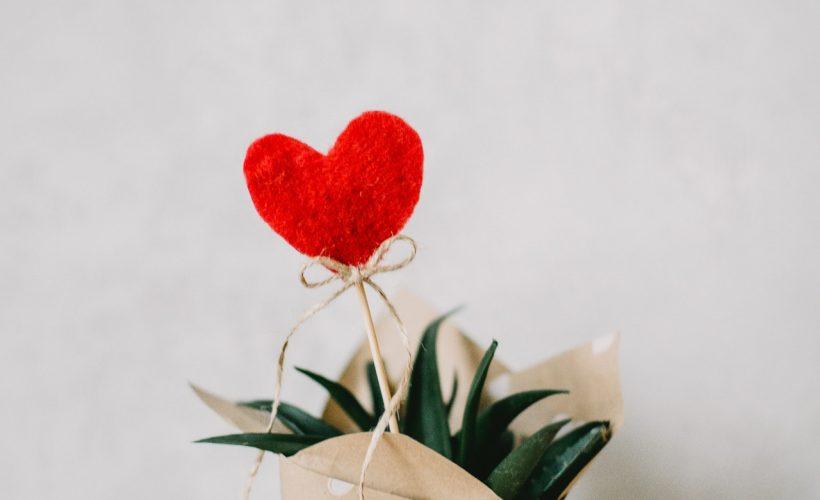 red heart ornament and aloe vera plant covered with paper 873083 820x500 - Walentynkowa kolacja – co ubrać?
