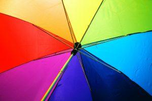 pexels sharon mccutcheon 1146851 300x200 - Kolory komplementarne, czyli zestawienia przyjemne dla oka